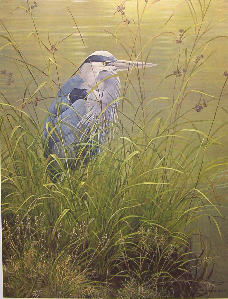 a life and career of robert bateman Robert bateman private art sales of limited edition prints by owners wildlife from grizzly bears to birds to other aquatic life and robert bateman contact.
